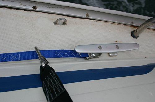 Personal harness (black) clipped onto a jackstay (blue). Note also how filthy the boat is!