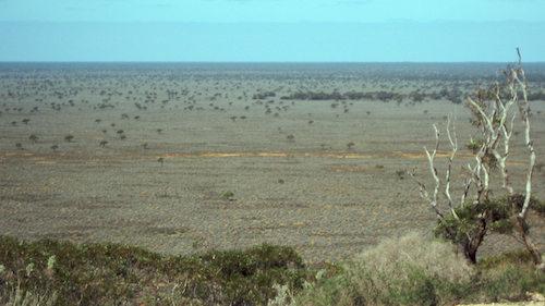 The plain viewed from a high scarp